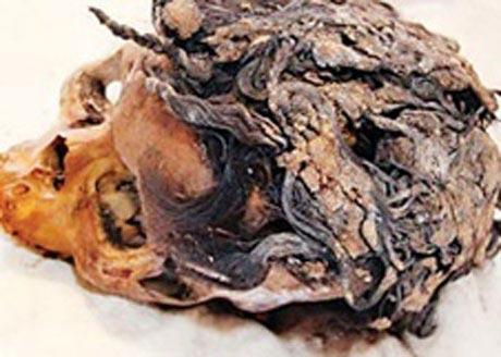 اکستنشن 3300 ساله زن مصری (عکس)