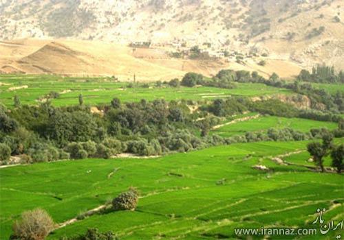 مکان دیدنی و دل انگیز باغ ملک در خوزستان (عکس)
