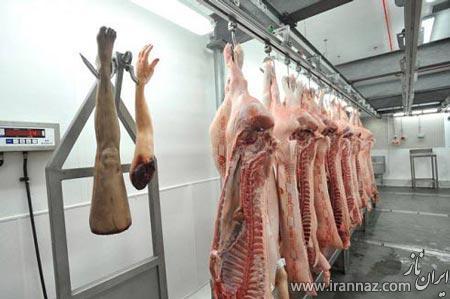 عجیب ترین قصابی که در آن گوشت انسان به فروش می رسد! (عکس)