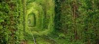 رمانتیک ترین مکان دنیا درکلون اوکراین (عکس)