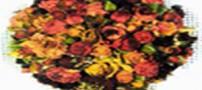 گل های طبیعی را با مایکروویو خشک کنید