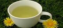 خواص و مزیت مصرف چای قاصدک
