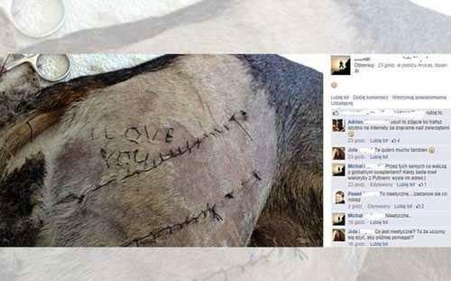 خواستگاری متفاوت دانشجوی پزشکی از نوع سگی! (عکس)