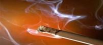 مواد غذایی که افراد سیگاری باید مصرف کنند