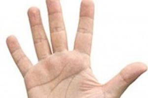 شخصیت شناسی از روی بند انگشتان