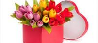 7 راهکار برای خشک کردن دسته گل عروسی