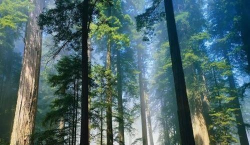 تصاویری فوق العاده زیبا از چشم اندازهای طبیعت