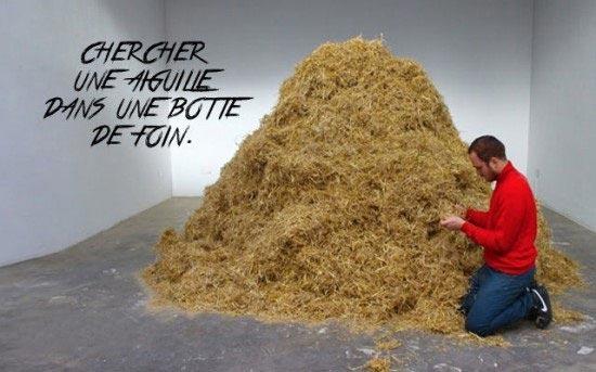 ابتکار جالب یک جوان برای کشف ضرب المثل قدیمی (عکس)