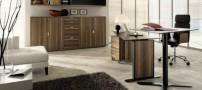 طراحی دکوراسیون اتاق کار در فضای منزل (عکس)