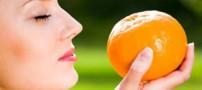 تأثیر تغذیه در حس بویایی و چشایی