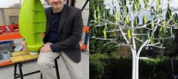 درخت شگفت انگیزی که برق تولید می کند (عکس)