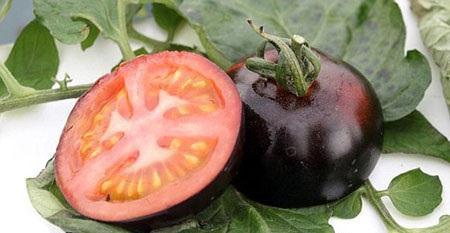 پرورش گوجه فرنگی به رنگ سیاه (عکس)