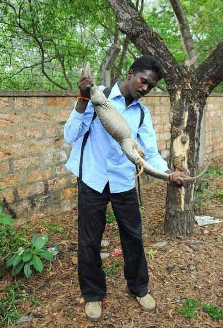 شغل ترسناک مرد هندی برای امرار معاش (عکس)