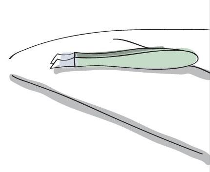 کدام موچین ها برای برداشتن ابرو مناسب ترند؟
