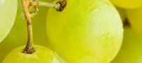 خاصیت روغن دانه انگور برای بدن
