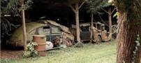 پیدایش گنجی در فرانسه با ارزش 600 میلیون دلار (عکس)