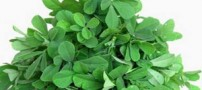 داروهای گیایی مؤثر برای درمان سرفه