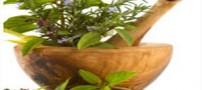 درمان کم خونی با چند داروی گیاهی مقوی