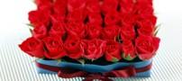 راه و روش های انتخاب همسر قابل اعتماد