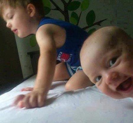 عکس های جدید از سوژه های خنده دار