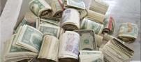پیدایش 6 هزار یورو در خانه ای متروکه (عکس)