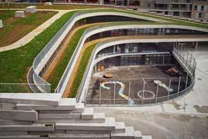 ایجاد فضای سبز روی پشت بام مدرسه (عکس)