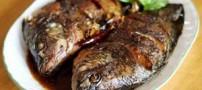 بیماران قلبی ماهی بخورند