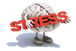 استرس و درمان طبیعی آن