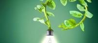 استفاده از گیاهان زنده برای تولید برق