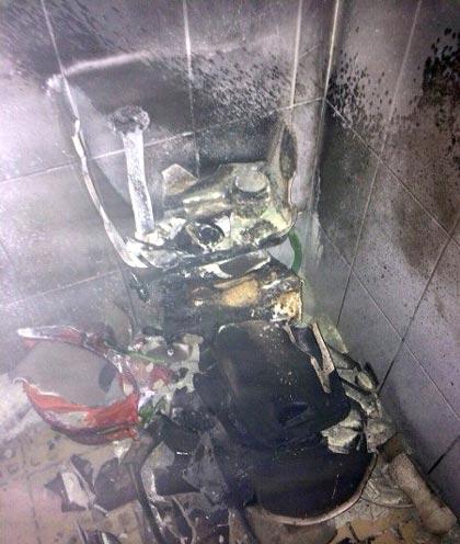 سوسکی که موجب انفجار شد! (عکس)