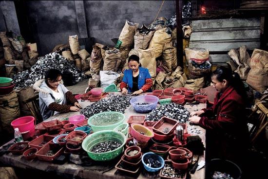 پرارزش ترین شغل آلوده جهان (عکس)