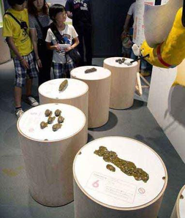نمایشگاه فضولات انسانی و آینده ی زمین ! (عکس)
