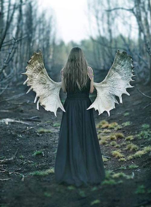 عکس های فوق العاده زیبا از دنیای جادویی