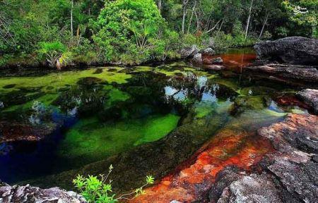 شگفت انگیزترین رودخانه ی جهان (تصاویر)