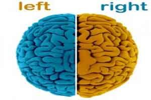 طالع بینی جالب نیمکره های مغز