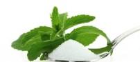 اهمیت غذایی گیاه استویا