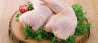 پیدایش وجود سرب در گوشت مرغ