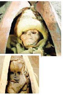 زنی که 3600 سال پیش جراحی مغز شد (عکس)