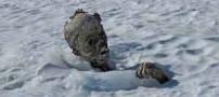 کشف مومیایی55 ساله در مکزیک (عکس)