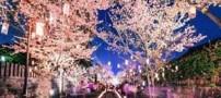 جذاب و دیدنی ترین جشنواره های جهان (عکس)