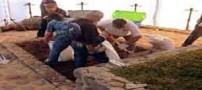 درخواست نبش قبر برای پسر گمشده