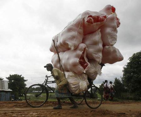 خنده دارترین عکس ها از حمل و نقل های سنگین