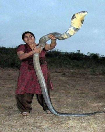 عکس های خنده دار از سوژه های داغ هندی