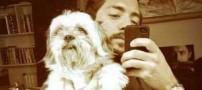 اعتراض شدید بهرام رادان به سگ کشی فجیع در شیراز