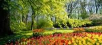 عکس های زیبا و دیدنی از طبیعت بهاری