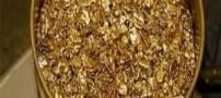 لباسی جالب از جنس طلا (عکس)