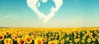 بیا با هم مثل خورشید حرف بزنیم، عاشقانه