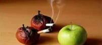 رابطه سیب و سیگار !!