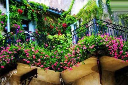زیباترین باغچه های بالکنی برای خانه ای زیباتر