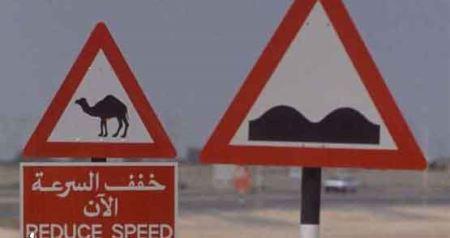 عکس های خنده دار از علائم عجیب رانندگی در دنیا
